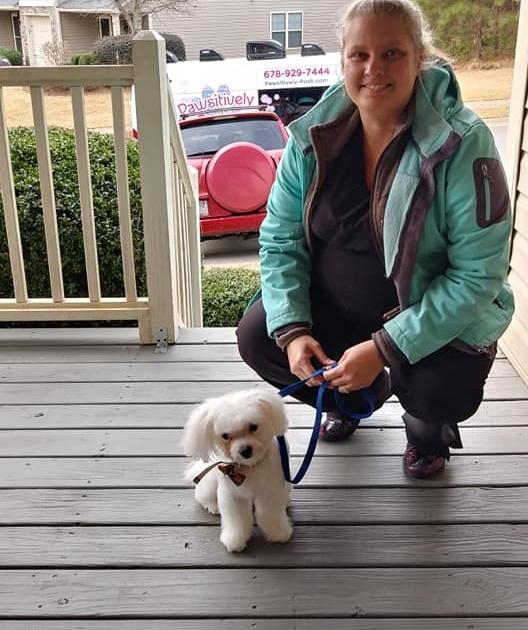 Oahu Mobile Grooming - Best Mobile Pet Grooming Service